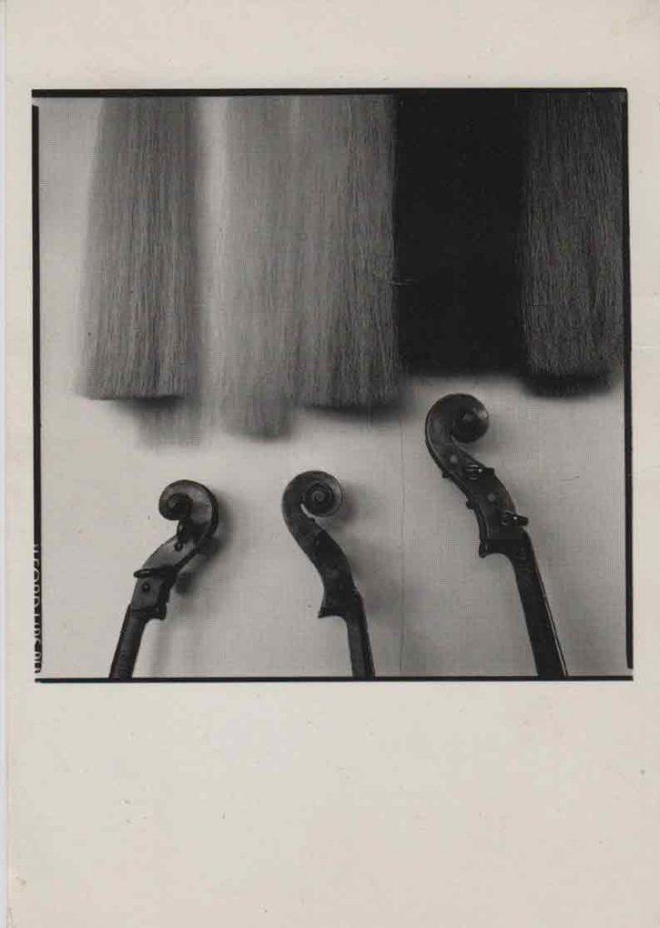 Indexation : Atelier «Le Quatuor à cordes», Grenoble##Légende : Crin pour mèches d'archets et tête de violoncelles##Epoque : Moderne##Propriété : Pub-003-mdv