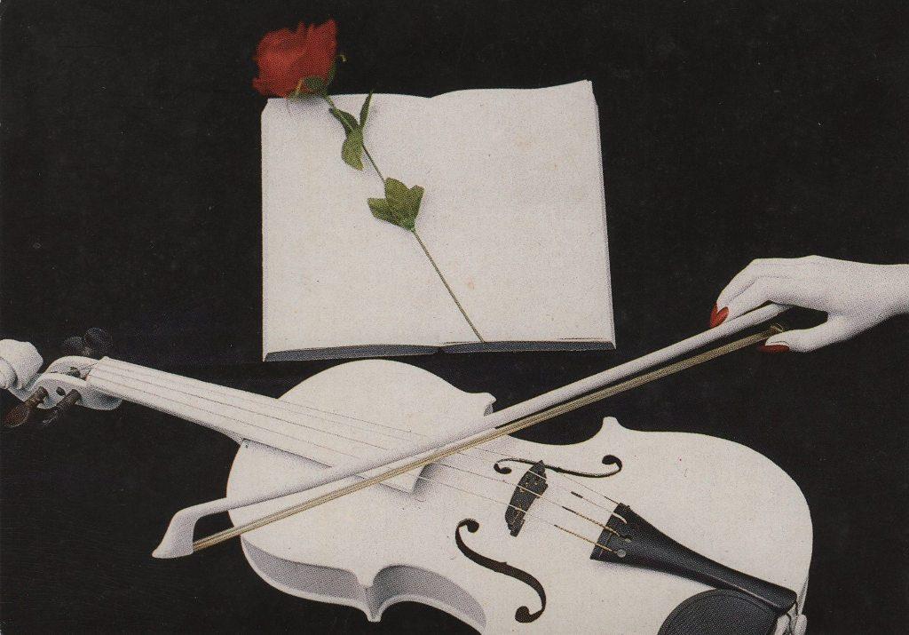 Indexation : Violon blanc et une rose##Epoque : Moderne##Propriété : Fan-025-mdv