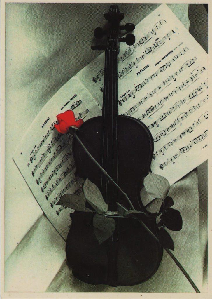 Indexation : Violon, rose, partition##Epoque : Moderne##Propriété : Fan-026-mdv