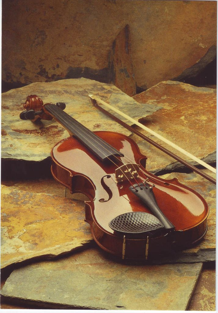 Indexation : Violon##Epoque : Moderne##Propriété : Fan-058-Roy